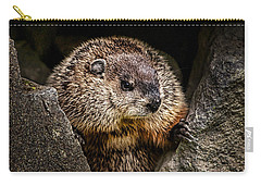 The Groundhog Carry-all Pouch by Bob Orsillo