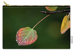 The Latter Rain  Carry-all Pouch by Jim Garrison