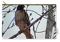 The Majestic Hawk Carry-all Pouch by Bobbee Rickard