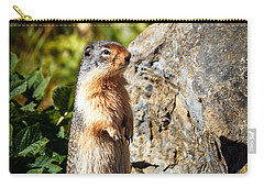 The Marmot Carry-all Pouch by Robert Bales