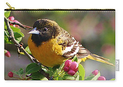 The Orioles Return Carry-all Pouch by Bruce Bley