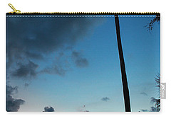The Palm Majestic Sunset Beach Tarpon Springs Florida Carry-all Pouch