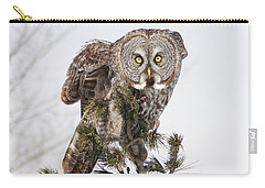The Perching Prince Carry-all Pouch by Heather King