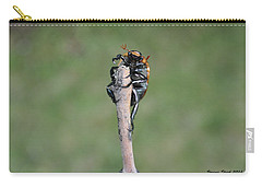 Carry-all Pouch featuring the photograph The Posing Beetle by Verana Stark