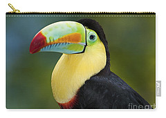 The Rainbow Bird.. Carry-all Pouch by Nina Stavlund