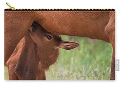 The Right Stuff Carry-all Pouch