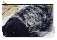 The Shaggy Dog Named Shaddy Carry-all Pouch by Marian Cates