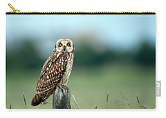 The Short-eared Owl  Carry-all Pouch