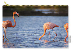 The Three Flamingos Carry-all Pouch by Adam Romanowicz