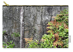 Carry-all Pouch featuring the photograph Thetis In Fall by Cheryl Hoyle