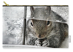 Thief In The Birdfeeder Carry-all Pouch