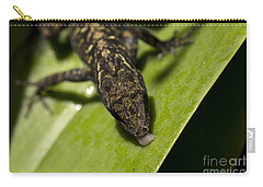 Carry-all Pouch featuring the photograph Thirsty Brown Anole by Meg Rousher