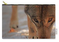 Those Eyes Carry-all Pouch by Karol Livote
