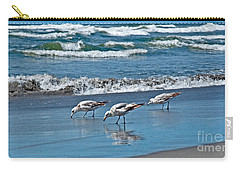 Carry-all Pouch featuring the photograph Three Seagulls At Ocean Shore Art Prints by Valerie Garner