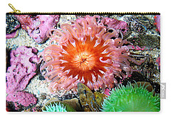 Carry-all Pouch featuring the photograph Tide Pool Creatures by Nick Kloepping
