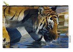 Tiger 2 Carry-all Pouch