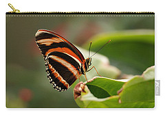 Tiger Striped Butterfly Carry-all Pouch