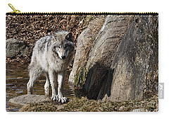 Carry-all Pouch featuring the photograph Timber Wolf In Pond by Wolves Only