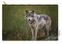Timber Wolf Pictures 401 Carry-all Pouch