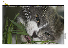 Carry-all Pouch featuring the photograph Time To Dine by Vicki Ferrari