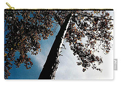 Carry-all Pouch featuring the photograph Tippy Top Tree Photo by Lesa Fine