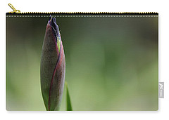 Today A Bud - Purple Iris Carry-all Pouch