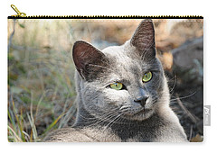 Tom Cat Carry-all Pouch
