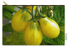 Tomato Triptych Carry-all Pouch by Brian Boyle