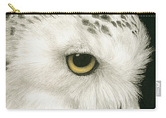 Carry-all Pouch featuring the painting Topaz In The Snow by Pat Erickson