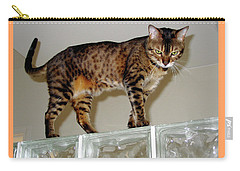 Carry-all Pouch featuring the photograph Tora On Glass II by Phyllis Kaltenbach