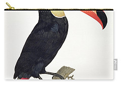 Toucan Carry-all Pouch by Jacques Barraband