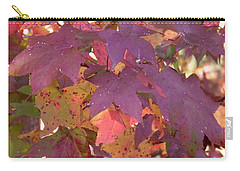 Carry-all Pouch featuring the photograph Traces Of Fall by Andrea Anderegg