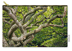 Tree #1 Carry-all Pouch by Stuart Litoff