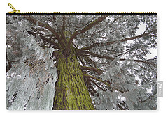 Carry-all Pouch featuring the photograph Tree In Winter by Felicia Tica