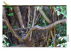 Carry-all Pouch featuring the photograph Tree by Rafael Salazar