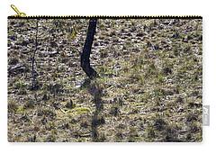 Australia - Eucalyptus Tree Shadow Carry-all Pouch