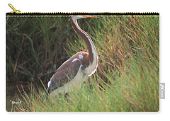 Carry-all Pouch featuring the photograph Tri-color Heron by Leticia Latocki