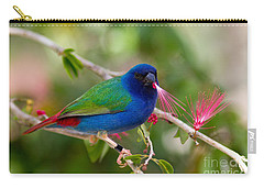 Carry-all Pouch featuring the photograph Tricolor Parrot Finch by Les Palenik