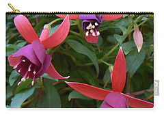Carry-all Pouch featuring the photograph Trifecta by Michael Porchik
