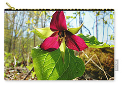 Carry-all Pouch featuring the photograph Trillium Wild Flower by Sherman Perry