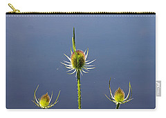 Trio Of Teasels Carry-all Pouch