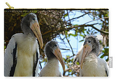 Triplet Wood Stork Nestlings Carry-all Pouch by Richard Bryce and Family