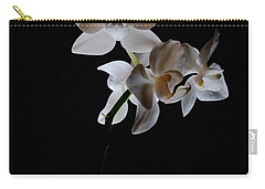 Carry-all Pouch featuring the photograph Triplets II Color by Ron White
