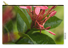Tropical Flowers In Singapore Carry-all Pouch