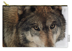 Carry-all Pouch featuring the photograph Trusting by Richard Bryce and Family