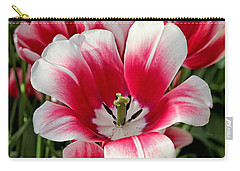 Tulip Annemarie Carry-all Pouch