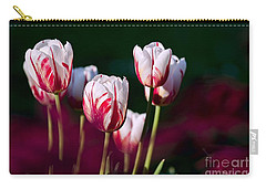Carry-all Pouch featuring the photograph Tulips Garden Flowers Color Spring Nature by Paul Fearn