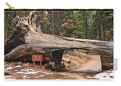 Tunnel Log Carry-all Pouch by Muhie Kanawati