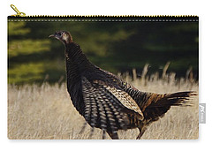 Turkey Carry-all Pouch by Steven Clipperton