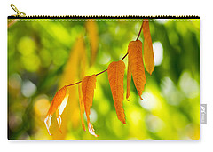 Turning Autumn Carry-all Pouch by Aaron Aldrich